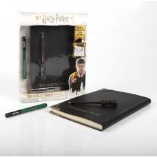 Игровой набор Wizarding World «Дневник Тома Реддла» WW-102