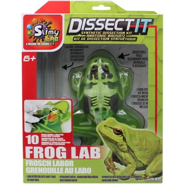"Развивающий набор Slimy Lab ""Анатомия животных - Лягушка"" 38070"